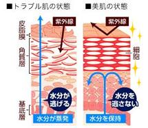 ライスフォースの肌質改善効果