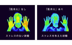 ストレスを与えた時の皮膚温の比較