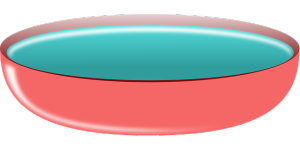 bowl-304286_640